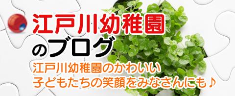 江戸川幼稚園のブログ